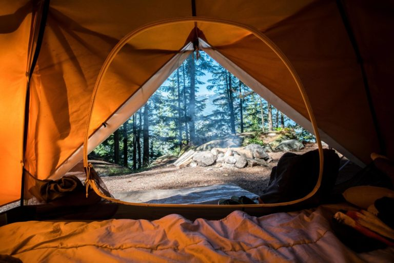 tent camping near eagle in idaho state parks near lake